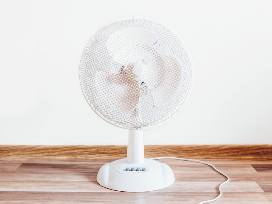 Fan summer heat