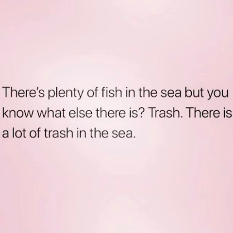 funny meme about other fish in the sea.